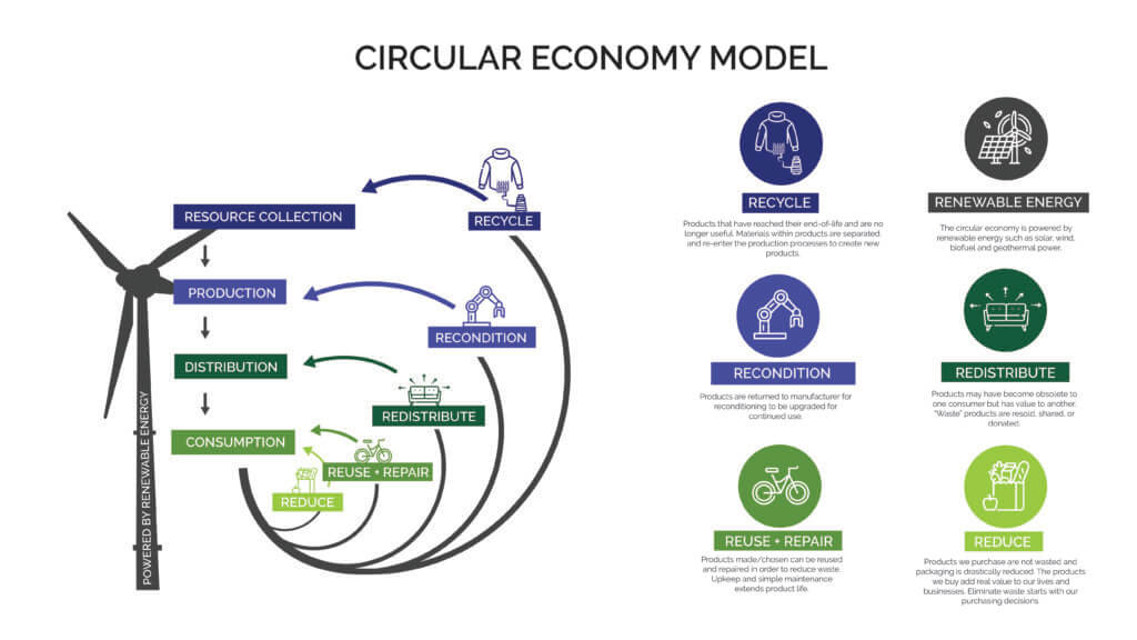 An infographic that gives the overview of a circular economy model in which resources get collected and reused to reduce waste.